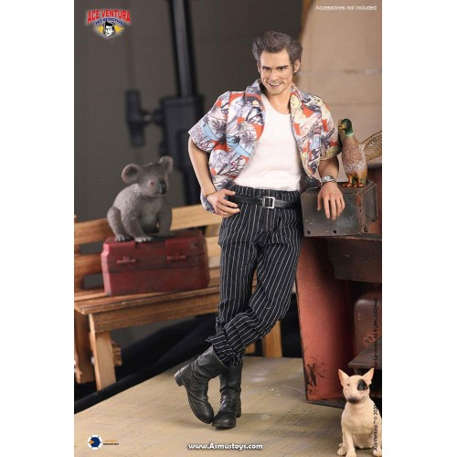Ace Ventura: Pet Detective Action Figure 1/6 Ace Ventura 30 cm ASMUS - 4