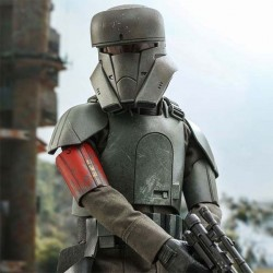 Star Wars The Mandalorian Action Figure 1/6 Transport Trooper 31 cm Hot Toys - 1