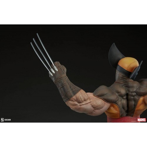 Marvel Premium Format Statue Wolverine 52 cm Sideshow Collectibles - 11